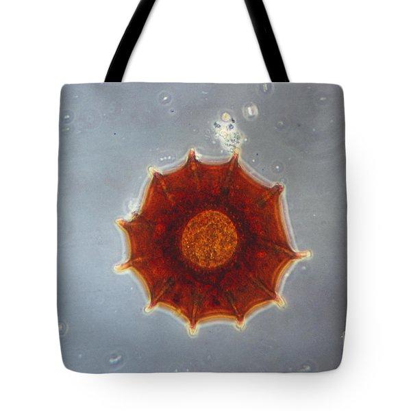 Arcella Dentata Lm Tote Bag by Eric V. Grave