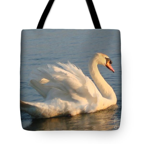 Are You Looking... Tote Bag