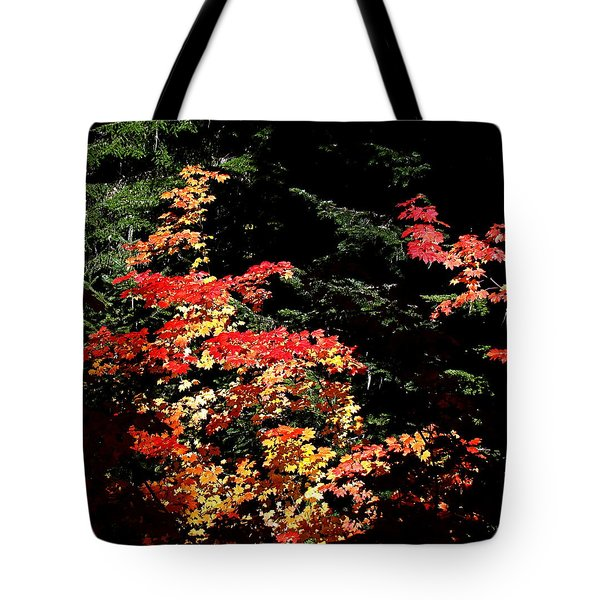 Arrival Of Autumn Tote Bag by Nick Kloepping