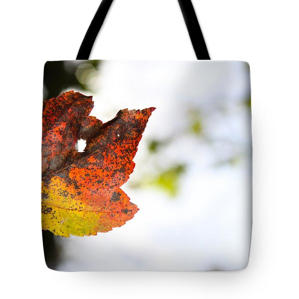 Artsy-fartsy Autumn I Tote Bag