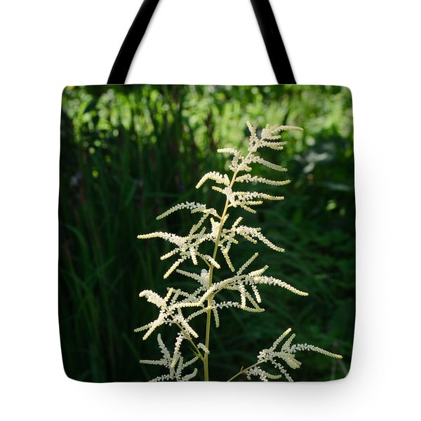 Tote Bag featuring the photograph Aruncus by Michael Goyberg
