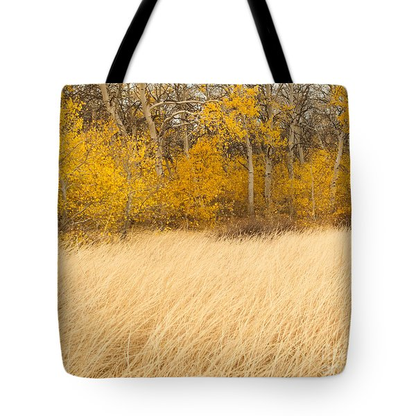 Aspen And Grass Tote Bag