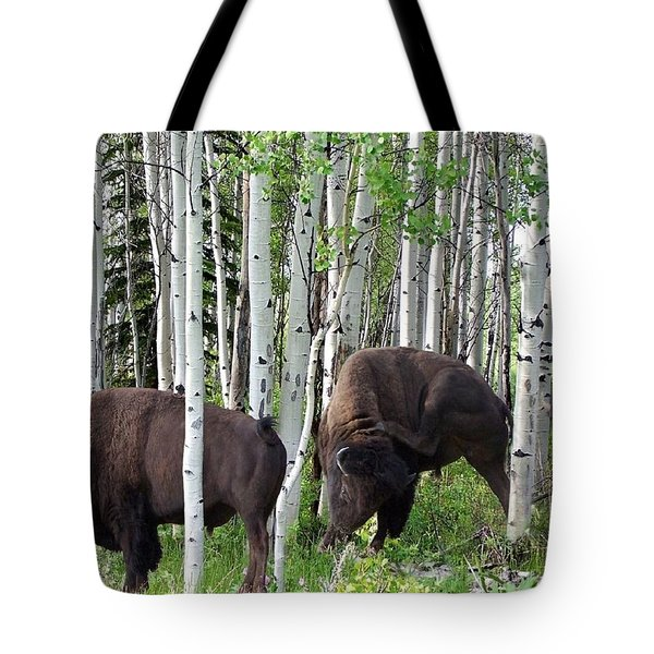 Aspen Bison Tote Bag by Bill Stephens