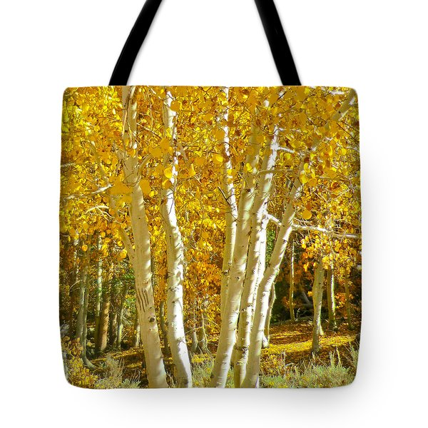 Aspen Claws Tote Bag