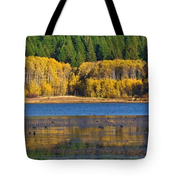 Aspen Gate Tote Bag