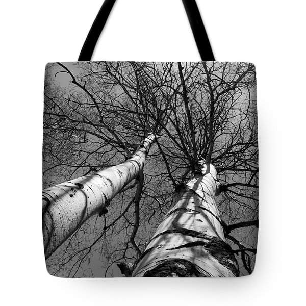 Aspen Glow Tote Bag by Colleen Coccia