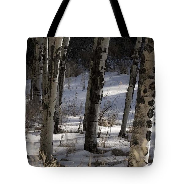 Tote Bag featuring the photograph Aspen Grove by Angelique Olin