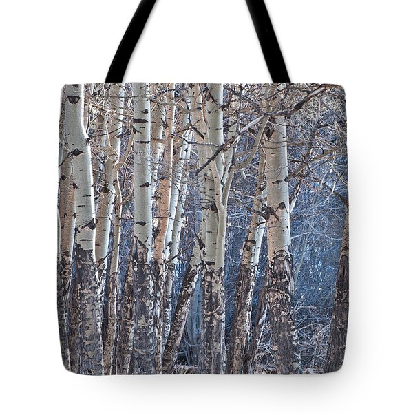 Tote Bag featuring the photograph Aspen Grove by Colleen Coccia
