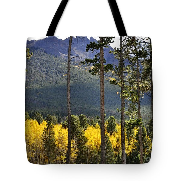 Tote Bag featuring the photograph Aspen Heaven Long's Peak Area by Nava Thompson