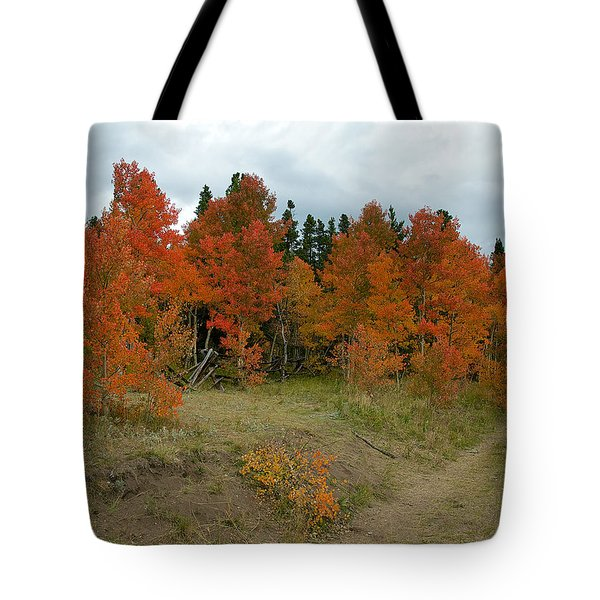 Aspen In Red Tote Bag by Stephen  Johnson