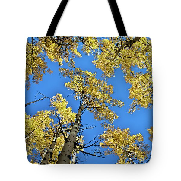 Aspen In The Sky Tote Bag by Stephen  Johnson