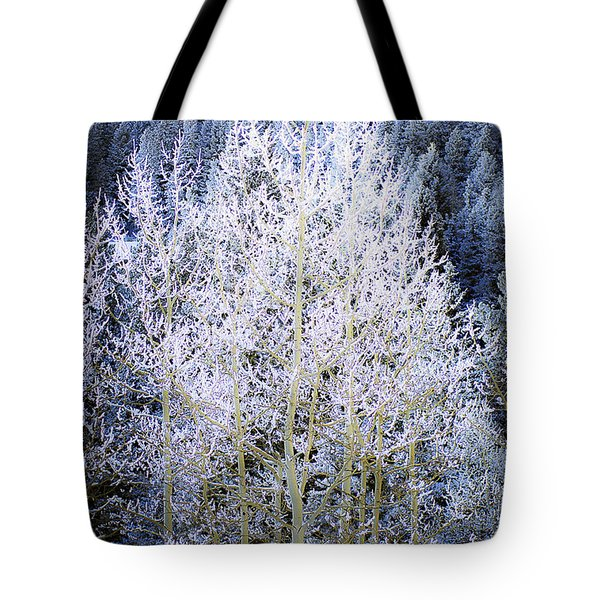 Aspen Lace Tote Bag by Beth Riser