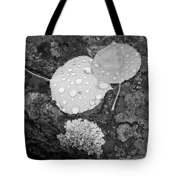 Aspen Leaves In The Rain Tote Bag
