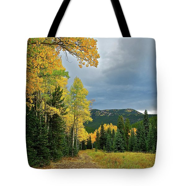 Aspen Pathway Tote Bag by Stephen  Johnson