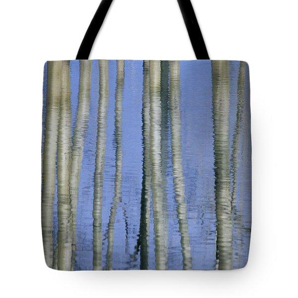 Aspen Poplar Trees Reflected In Spring Tote Bag by Darwin Wiggett