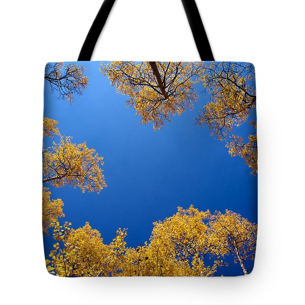Aspen Sky View II Tote Bag by Stephen  Johnson