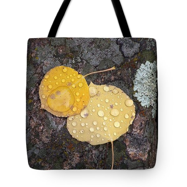 Aspen Tears Tote Bag