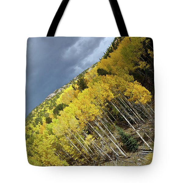 Aspen Tilt Tote Bag by Stephen  Johnson