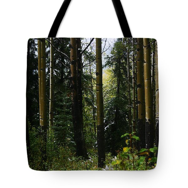Aspens Banff National Park Tote Bag