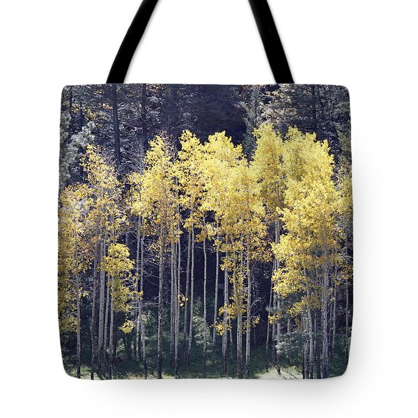 Aspens In Sunlight Tote Bag