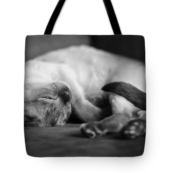 Astir Tote Bag by Robin Konarz