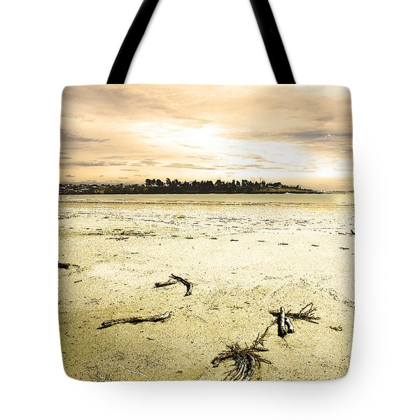 At Caroline Bay Timaru New Zealand Tote Bag by Nareeta Martin