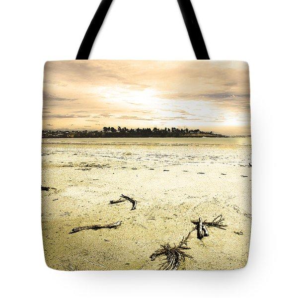 Tote Bag featuring the photograph At Caroline Bay Timaru New Zealand by Nareeta Martin