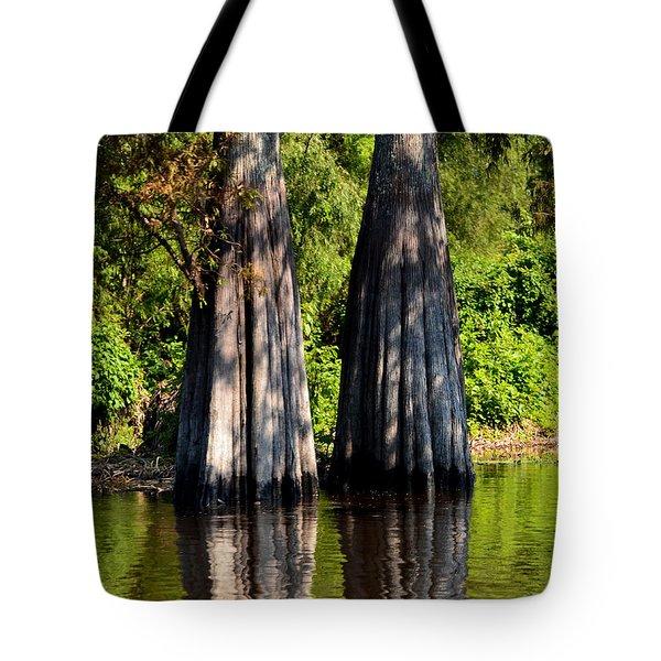 Atchafalaya Basin 53 Tote Bag