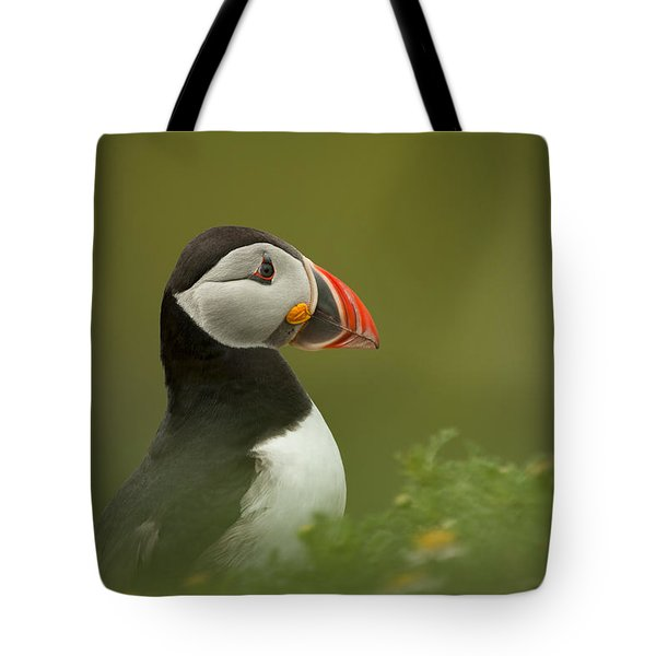 Atlantic Puffin Tote Bag by Andy Astbury