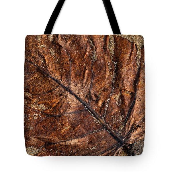 Atres 1 Tote Bag by Karol Livote