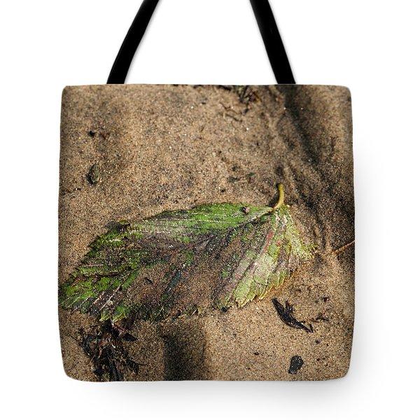 Atres 2 Tote Bag by Karol Livote
