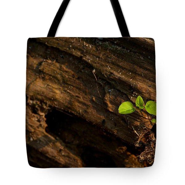 Atres 9 Tote Bag by Karol Livote