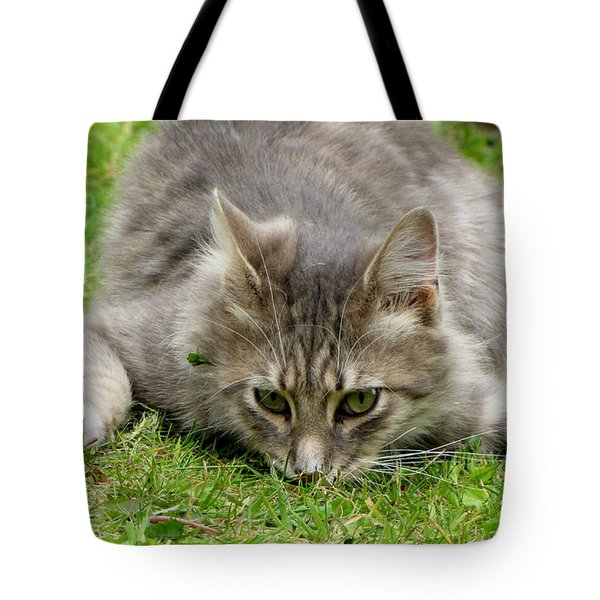 Attack Tote Bag by Barbara Walsh