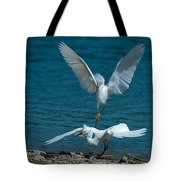 Attack From Above Tote Bag by Stephen  Johnson