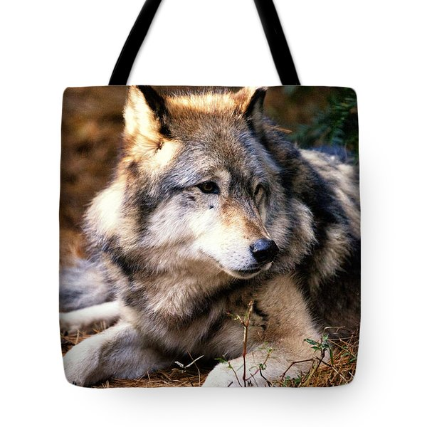 Attention Tote Bag by Karol Livote