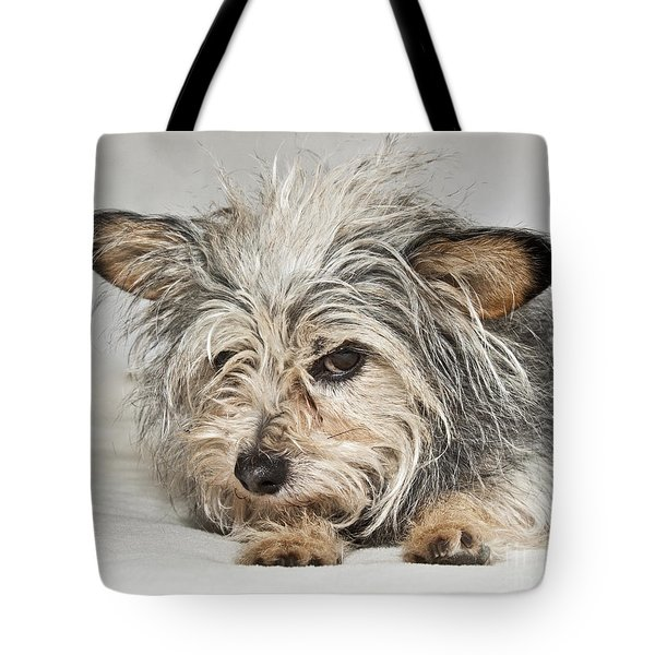 Attitude Tote Bag by Jeannette Hunt