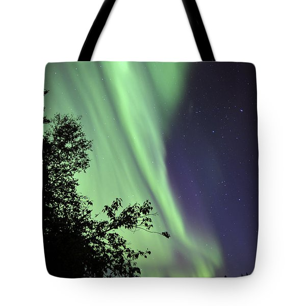 Aurora Borealis Above The Trees Tote Bag by Jiri Hermann