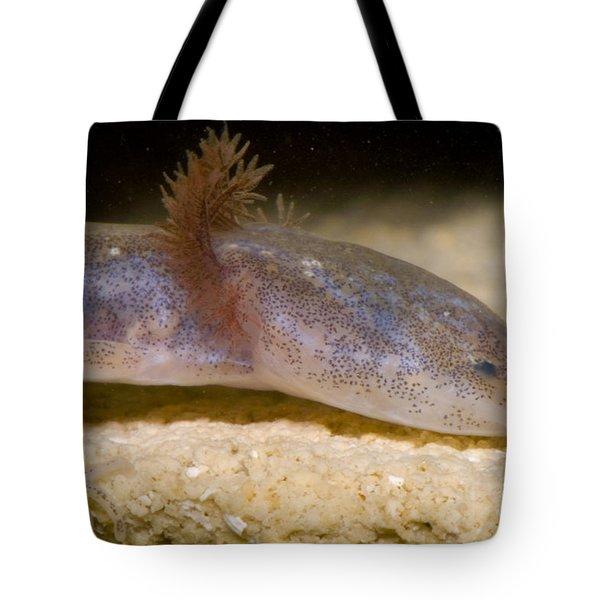 Austin Blind Salmander Tote Bag by Dante Fenolio