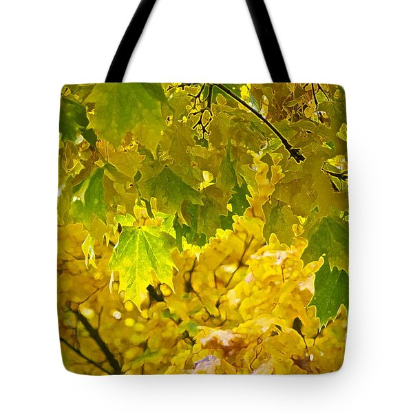 Autumn - Mellow Time Tote Bag by Gwyn Newcombe
