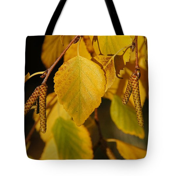 Autumn Birch In Southern Oregon Tote Bag by Mick Anderson