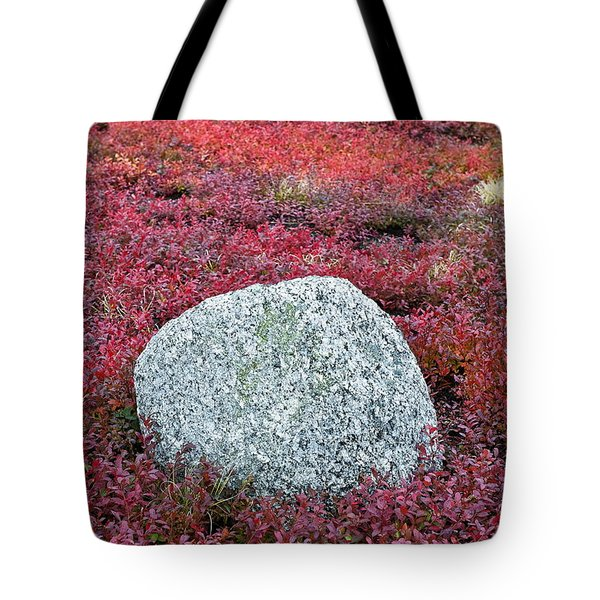 Autumn Blueberry Field Tote Bag by John Greim