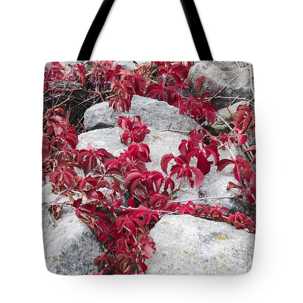 Autumn Color Is Red Tote Bag