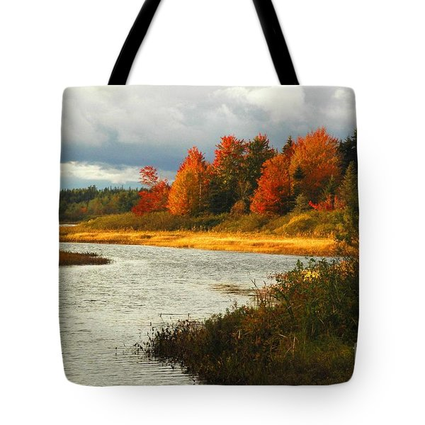 Tote Bag featuring the photograph Autumn Colors by Alana Ranney