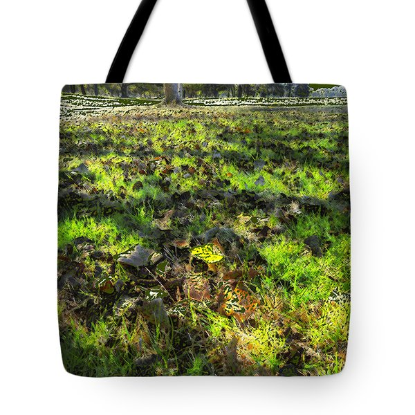 Autumn Colors Tote Bag by Anne Mott