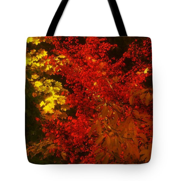 Autumn Colors Tote Bag by Jeff Breiman
