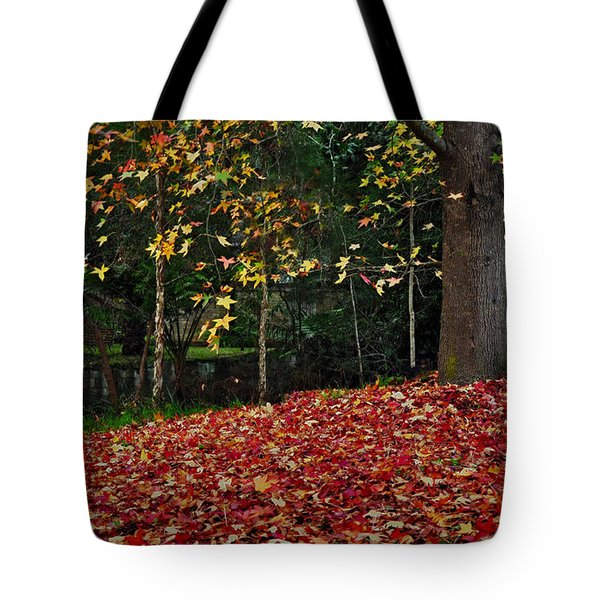 Autumn Colors Tote Bag by Kaye Menner