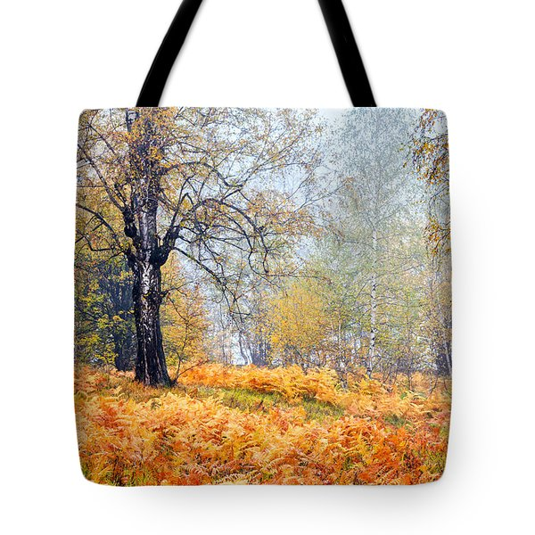 Autumn Dreams Tote Bag by Evgeni Dinev