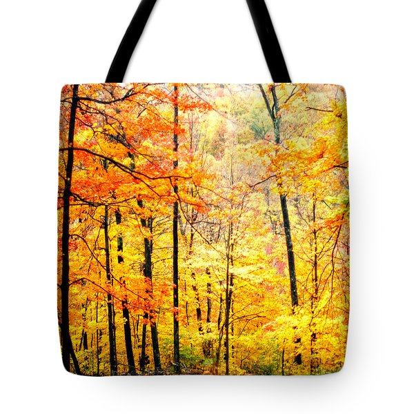 Tote Bag featuring the photograph Autumn Forest by Randall Branham