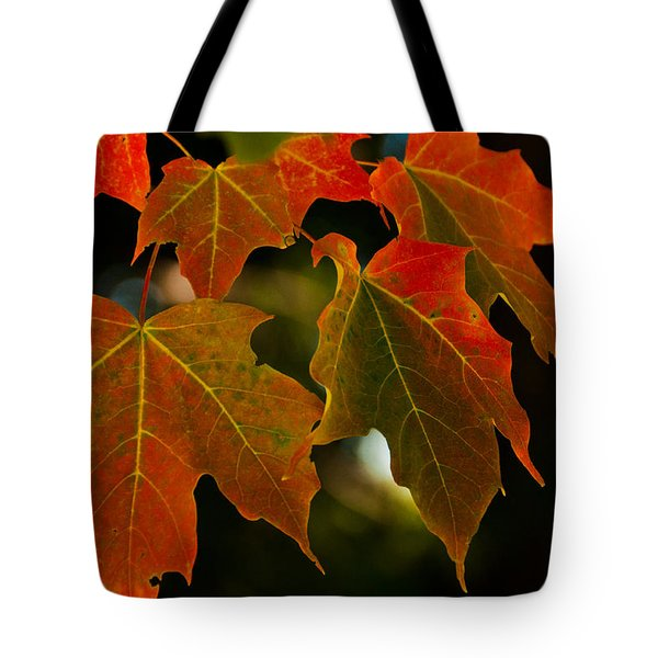 Tote Bag featuring the photograph Autumn Glory by Cheryl Baxter