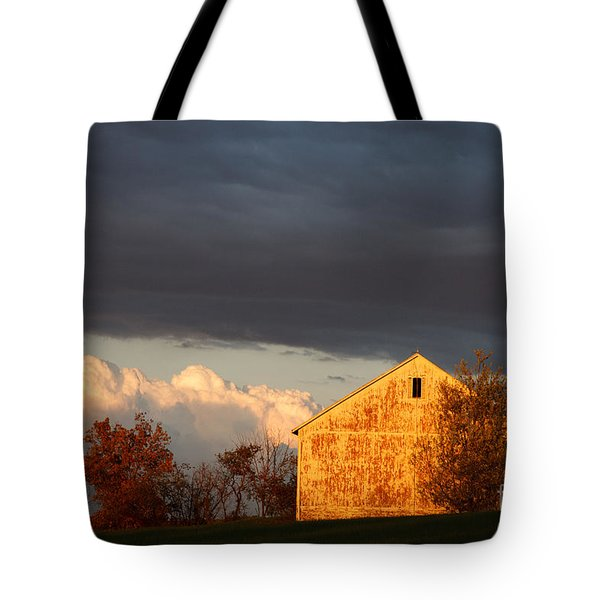 Tote Bag featuring the photograph Autumn Glow With Storm Clouds by Karen Lee Ensley